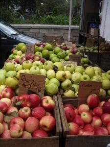 NYC farmer's market apples