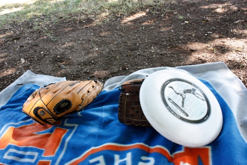 baseball glove and frisbee